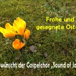 Osterwünsche2016_Gospelchor